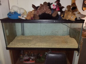 reptile tank  dont hold water