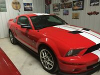 2008 Shelby Mustang GT Other