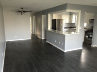 Newly Renovated 3 Bedroom Home with Modern Look
