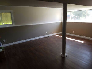Bright 1 bedroom lower unit - utilities included