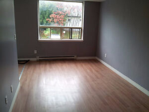 Spacious 2-Bedroom Apartment Available July 1, 2016