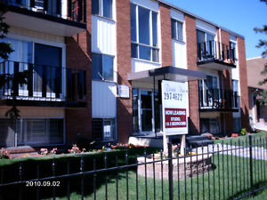 11520 124 st -  Updated Bachelor- Free Rent and Cable/internet
