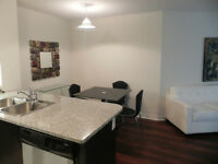 Beautiful Furnished Apartment in the heart of Downtown Toronto