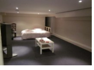 Extremely Clean and Quiet Basement Apartment