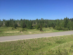 PRICE REDUCTION!  60 Acres Close to Many Amenities
