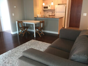 Toronto North York Yonge Sheppard 2 bed room short term rental