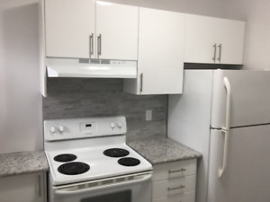 Renovated one bedroom suite available immediately