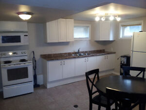 2 BR bsmt suite with back yard DOWNTOWN
