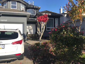 Top 2 floors in Spacious House in South Surrey - 6 Bed, 3.5 Bath