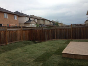 LANDSCAPING GREAT TIME TO RE SOD MULCH GARDEN BEDS YARD CLEAN UP