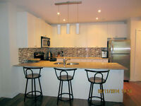 New Luxurious Uptown 2 Bed, 2 Bath Condo, short term rent Sept 1