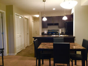 Brand new 2 bedroom condo fully furnished for rent available now