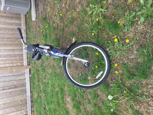 Chopper bicycle For sale