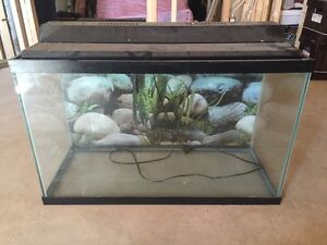 30 gallon fish/turtle tank
