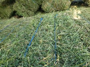 2nd cut 80% alfalfa hay