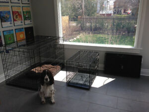 3 different dog crates