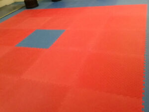 Martial Arts Mats - Exercise, Fitness, Taekwondo