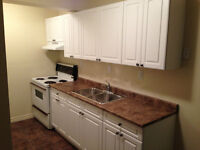 Various Bachelor, 1, 2 or 3 bedrooms Apartments for Rent