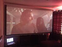 "250"" cinema screen"