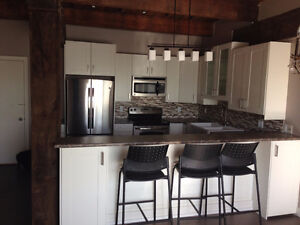 Lively Executive Large 2 Bedroom - Open Concept- Fully Renovated