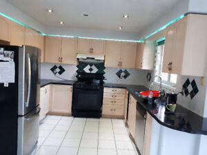 Kitchen Cabinets, Stove, Countertop, Hood, and Sink FOR SALE