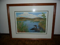 Loon picture - framed