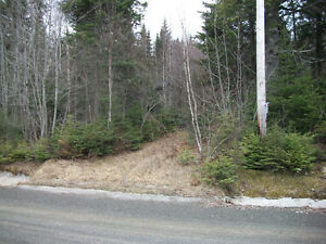 Land for sale in Pictou County