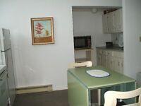 Clean, large, fully furnished 1 b/r apt