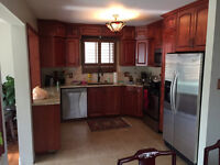 custom kitchens/countertops/reception counters/custom woodworkin