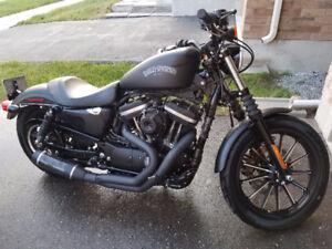 Harley Davidson Iron 883 converted to 1200