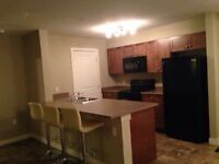 Executive Room for Rent. Estevan.
