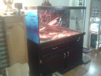 Down sizing tanks, lamps, decorations etc.