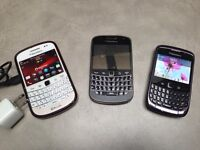 Blackberry curve and bold