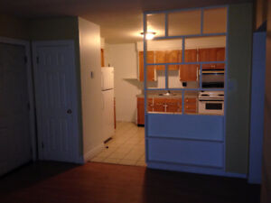 2 Bdrm Basement Level Apt. All included with Wifi.