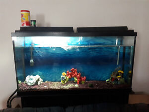 90 Gallon Fish Tank Stand Water Filteration System Heater access