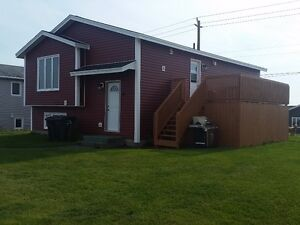 Sheds, baby barns and patio decks at great prices!