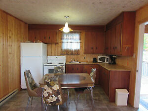 384 TURKSWATER ROAD, MAKINSONS..COTTAGE COUNTRY St. John's Newfoundland image 14