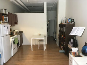 1 Bdr Downtown Condo - LRT in Basement - $950/month