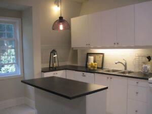 HIGH PARK -  BRIGHT BEAUTIFUL NEW 1 BEDROOM WITH FIREPLACE