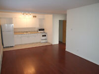 One bedroom apartment Lower Mount Royal.
