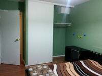 One furnished bed with own bath, Central mississauga, great view