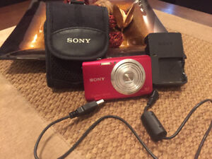 Sony Cybershot Camera and case