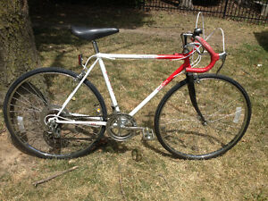 Merici 10 speed Road bike - Good Condition!