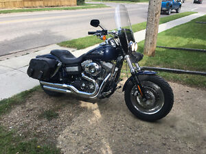 For Sale - 2008 Dyna Fat Bob