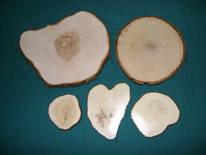 Wood slices, wedding center-pieces, coasters London Ontario image 10