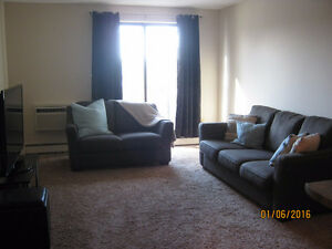 Executive Two Bedroom Semi-Furnished Condo for Rent