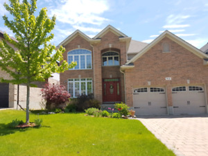 A must see home!  2 storey located Byron