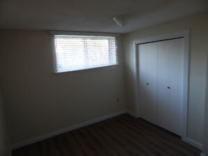 1200 square ft Basement Suite for rent