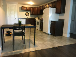 Month to Month - Fully furnished beautiful 1 bdrm apartment