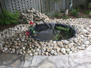 Fish Pond Package